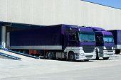 Purple Trucks