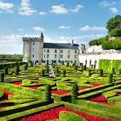 beautiful castles of Loire valley (more in my gallery)