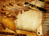 vintage background with autumn leave,filmstrips and blank page