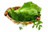 Greens Vegetables In Basket