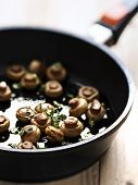 pic of sauteed  - close up of a pan of sauteed mushrooms - JPG
