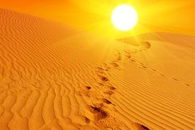 pic of sahara desert  - Beautiful sunset over the sand dunes in the Sahara desert - JPG