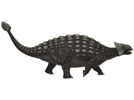 pic of ankylosaurus  - A huge armored dinosaur Ankylosaurus was a herbivore from the Cretaceous Era - JPG