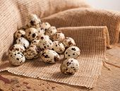 foto of quail  - Quail eggs on burlap on wooden table
