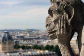 Gargoyle is watching on Paris