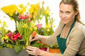 Florist arrange spring flower potted colorful plants decoration