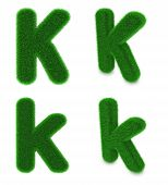 picture of letter k  - Letter K covered by green grass isolated on white background - JPG