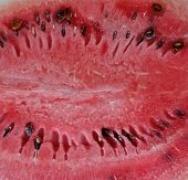 Watermelon Pulp Surface.