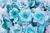 Постер, плакат: blue funeral flower