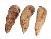 picture of cassava  - three whole manioc  - JPG