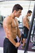 Side view of a shirtless young muscular man using triceps pull down in gym