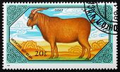 Postage Stamp Mongolia 1989 Goat, Domestic Animal