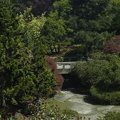 Garden With Bridge