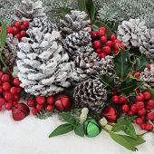 Christmas flora with snow, holly, ivy, mistletoe, fir and pine cones and bauble decorations.