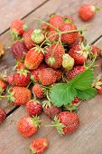 Pile of just gathered strawberries on an old wooden table