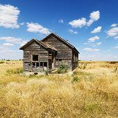 Dilapidated Abandoned House