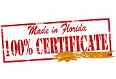 Made In Florida One Hundred Percent Certificate