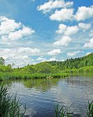 Beautiful Springlike Marshland And Pond, German Landscape