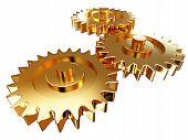 Gold Gear