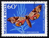 Postage Stamp Hungary 1969 Eyed Hawk Moth