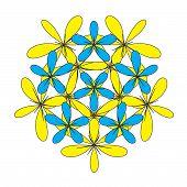 Flower Floral Composition