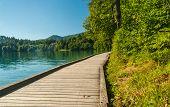 Lake Bled path, Slovenia