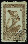 North Korea - Circa 1965: Postage Stamp Printed In North Korea Shows Image Of A Butterfly From A Coc