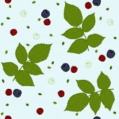 Raspberries, blackberries and green leaves on a white field. Seamless pattern.