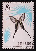 China - Circa 1963: Postal Stamp Printed In China Shows Image Of A Butterfly Black Graphics On A Whi