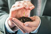 picture of fertilizer  - Businessman holding a sprouting seedling in fertile earth cupped in the palm of his hand in a conceptual image of environmental awareness or business startup - JPG