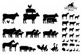 image of working animal  - Farm animals silhouettes collection - JPG
