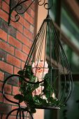 foto of caged  - Decoration of bright orange and green colorful flower in black cage - JPG