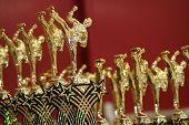 Karate Martial Arts Trophies