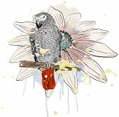 picture of parrots  - Vector sketch of a parrot with flower - JPG