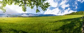foto of cade  - Mid spring morning on a quiet country road in Cade - JPG
