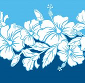 Naadloze Hibiscus hybride rand/patroon