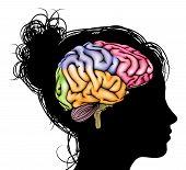 Постер, плакат: Woman Brain Concept