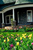 Huis In het voorjaar van
