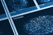 Thumb Fingerprint File