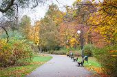 Footpath Or Trail With Bench For Relaxation In Autumnal Park poster