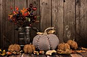 Shabby Chic Pumpkins And Autumn Home Decor With Rustic Wood Background poster