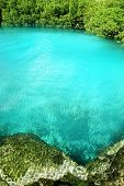 pic of cenote  - cenote mangrove clear turquoise water Mayan Riviera Mexico - JPG