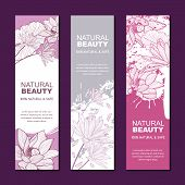Vector Backgrounds For Label Or Package For Natural Herbal Cosmetic, Asian Spa And Massage. Sketch L poster
