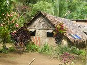 Rural House In Vanuatu