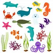 stock photo of sea life  - Set of sea animals  - JPG