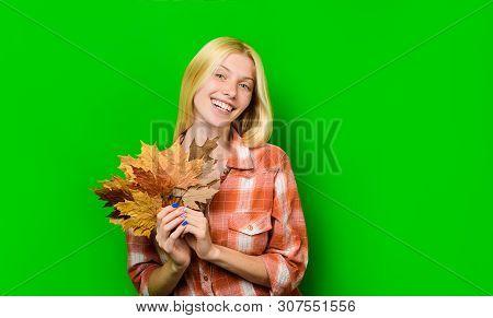 poster of Autumn. Autumn Leaves. Autumn Sales. Maple Leaf. Autumnal Sales. Autumnal Leaves. September. October
