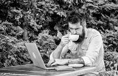 Man Bearded Hipster Sit Outdoors With Laptop Surfing Internet And Drinking Coffee. Book Apartment On poster