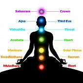 Meditación, Chakras