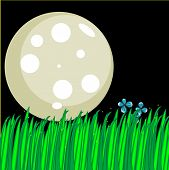 pic of fireflies  - Cute illustration of a moon and tall grass at night with fireflies - JPG