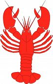 picture of crawdads  - a vector illustration of a red live lobster - JPG